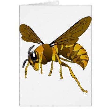 The Brown Wasps Essay - essaymaniacom